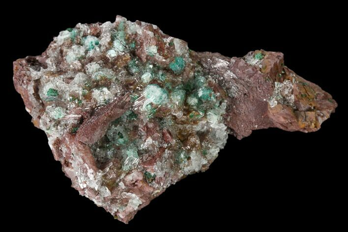 "2.6"" Rosasite, Selenite and Ferroan Dolomite Association - Morocco"